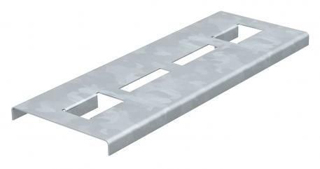 Rung support plate for the maintenance of electrical function FS